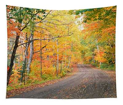 Road Passing Through A Forest, Keweenaw Tapestry