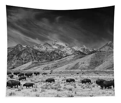 Roaming Bison In Black And White Tapestry