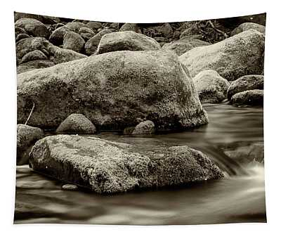 Roaring Fork Mossy Rocks - Strong Sepia Tapestry
