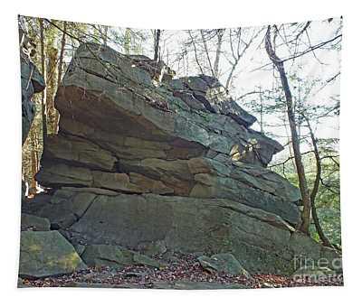 Rock Formation 2 - Ricketts Glen Tapestry