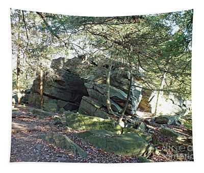 Rock Formation - Ricketts Glen Tapestry