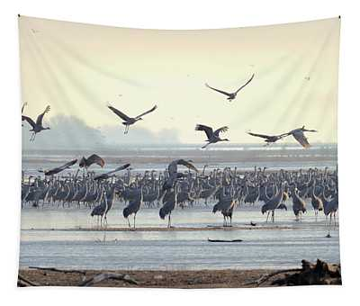 Roosting On The Platte Tapestry