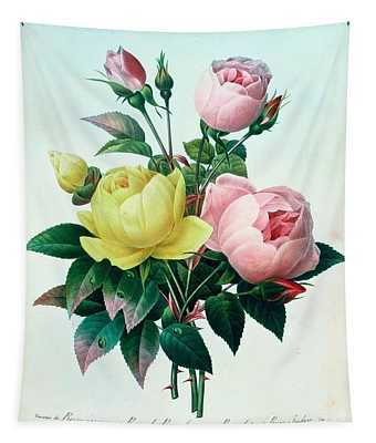 Rosa Lutea And Rosa Indica Tapestry