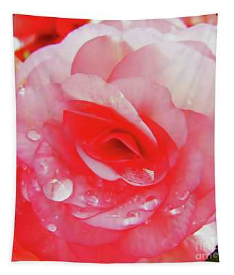 Rose After The Rain Tapestry