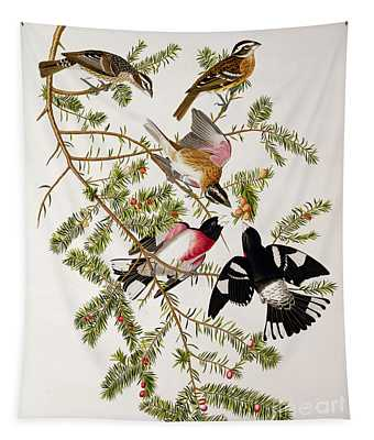 Rose Breasted Grosbeak Tapestry