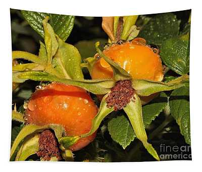 Rose Hips Tapestry