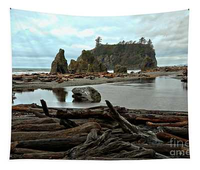 Ruby Beach Driftwood Tapestry
