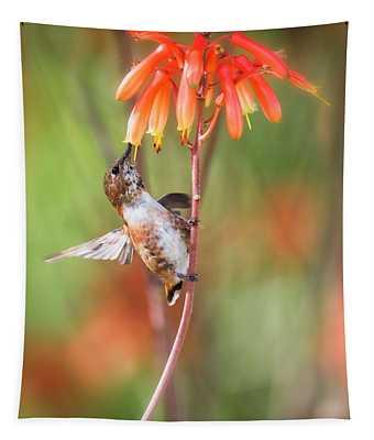 Rufous Hummingbird Tapestry