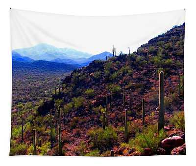 Saguaro National Park Winter 2010 Tapestry