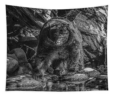 Salmon Seeker Black Bear  Tapestry