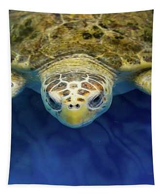 Sammy The Sea Turtle Tapestry