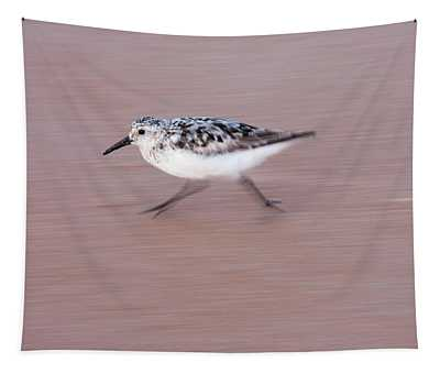 Sanderling On The Run Tapestry