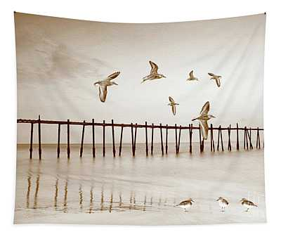 Sandpipers In Sepia Tapestry