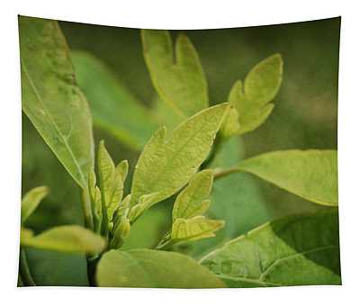 Sassafras Tree Tapestry