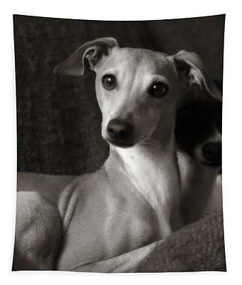 Say What Italian Greyhound Tapestry
