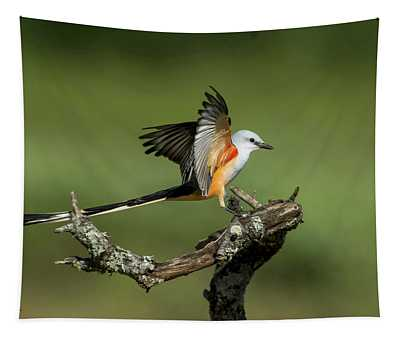Scissor-tailed Flycatcher Tapestry