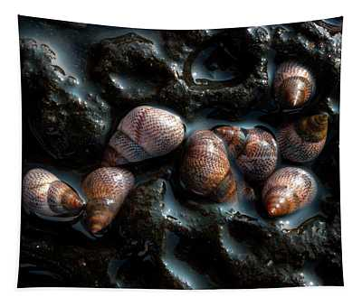 Sea Snails Tapestry