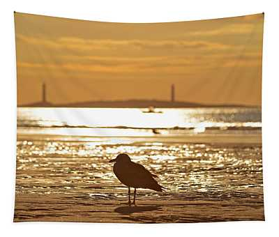 Seagull Admiring Thacher Island Gloucester Ma Good Harbor Beach Tapestry