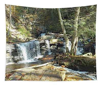 Delaware Falls 2 - Ricketts Glen Tapestry