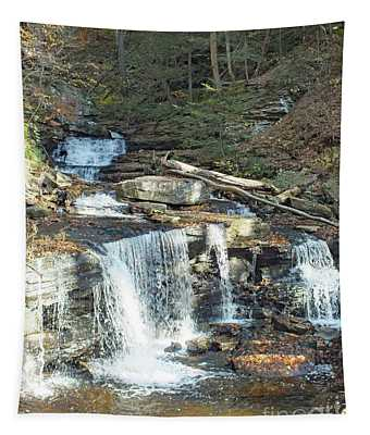 Delaware And Seneca Falls - Ricketts Glen Tapestry