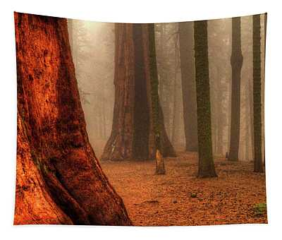 Sequoias Touching The Clouds Tapestry