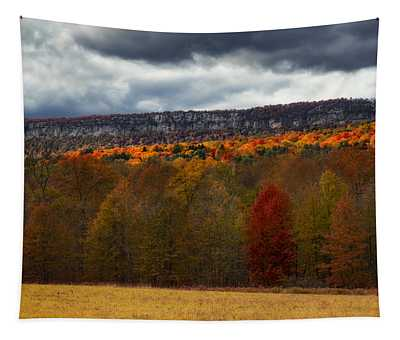 Tapestry featuring the photograph Shawangunk Mountains Hudson Valley Ny by Susan Candelario