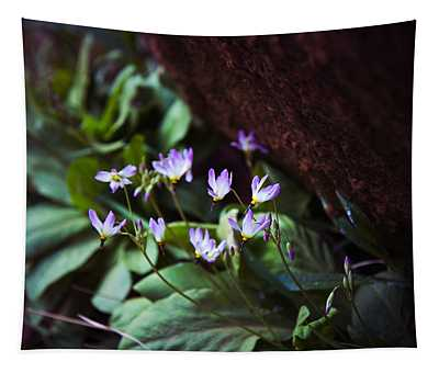 Shooting Stars Tapestry