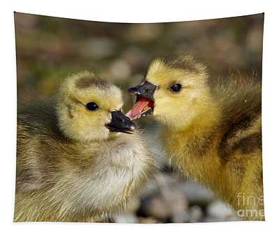 Sibling Love - Baby Canada Geese Tapestry