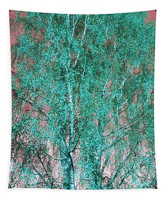Silver Birch In Turquoise Tapestry