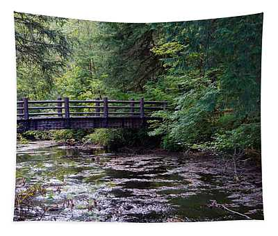 Silver Creek Falls #38 Tapestry
