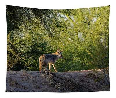 Sleepy Coyote Tapestry