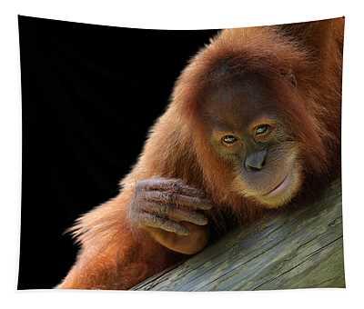 Cute Young Orangutan Tapestry