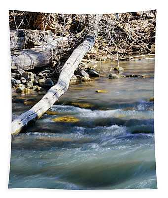 Smooth Water Tapestry
