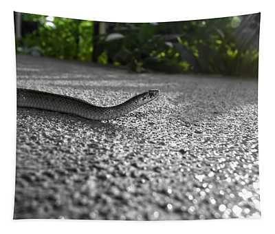 Snake In The Sun Tapestry
