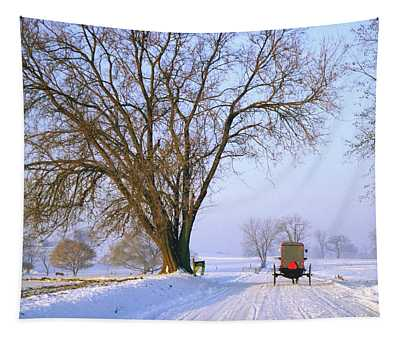 Snow Buggy Tapestry