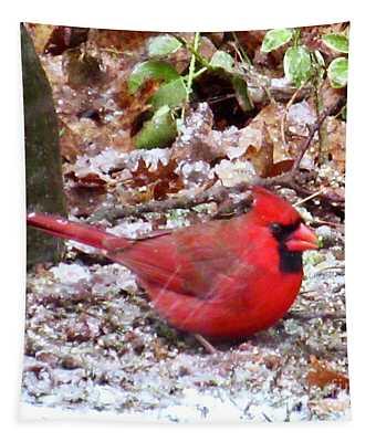 Snow Cardinal  Tapestry