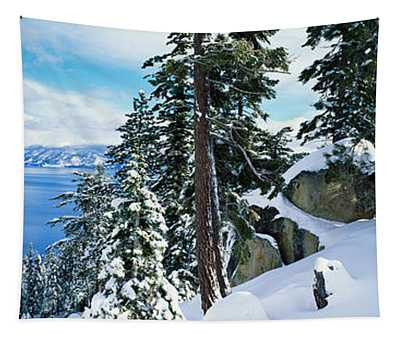 Snow Covered Trees On Mountainside Tapestry