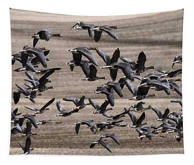 Snow Geese In Flight Tapestry