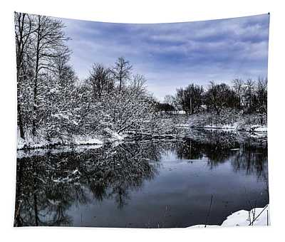 Snowy Ellicott Creek Tapestry