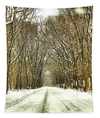 Snowy Path Tapestry