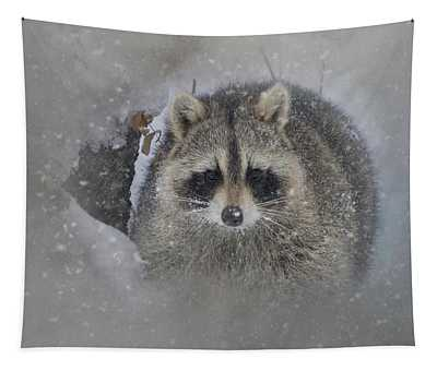 Snowy Raccoon Tapestry