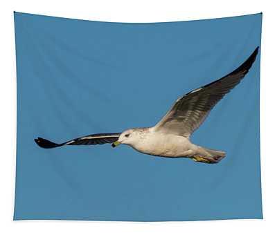Soaring Gull Tapestry