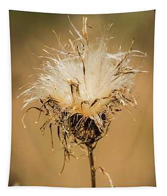 Softness Revealed Tapestry
