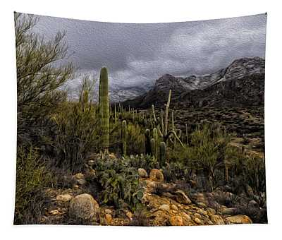 Sonoran Winter No.3 Tapestry
