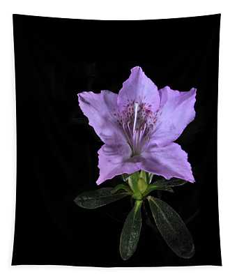 Southern Indica Azalea 2 Tapestry