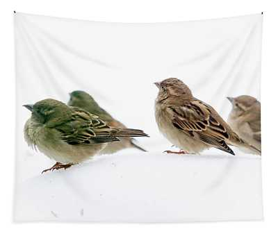 Sparrows In The Snow Tapestry