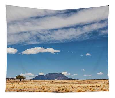 Sparse Tapestry