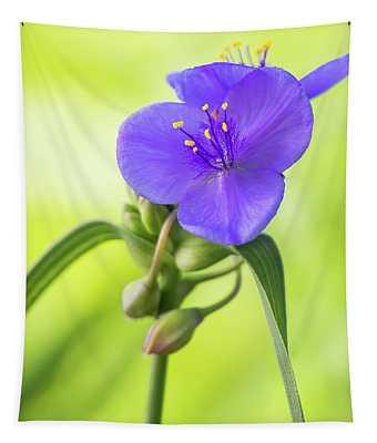 Spiderwort Wildflower Tapestry