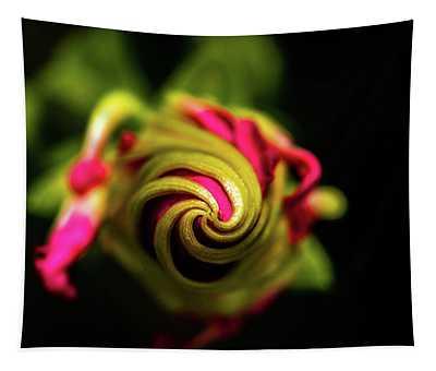 Spiral Tapestry