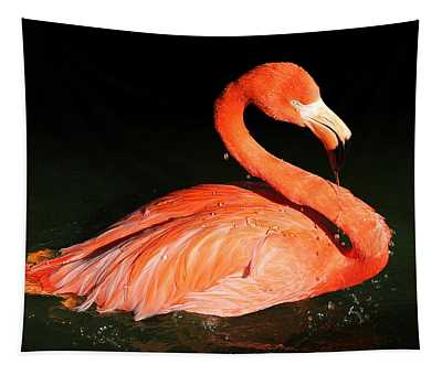 Spotlight On A Bathing Flamingo Tapestry